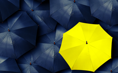 The different kinds of protection – Do you need them or are they just an extra expense?